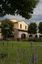 Welcome to Collepina - Agriturismo Collepina